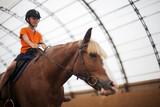 Boy in helmet learning Horseback Riding - 224344155