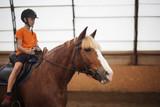Boy in helmet learning Horseback Riding - 224344173