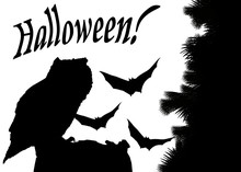 Halloween Card  Silhouettes Of An Owl Sitting On A Stump And Bats At Night   Sticker
