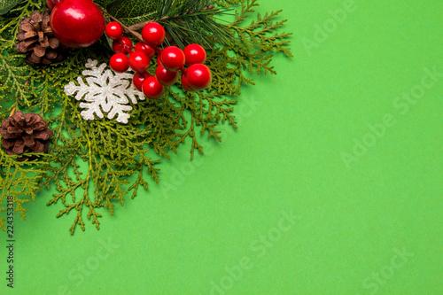Christmas Fir Tree On Green Background  - 224353318