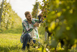 Young man working in the vineyard