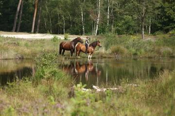 Mädchen mit Pferd in der Heide am See © Nadine Haase