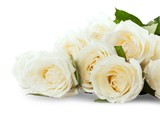 Bouquet of White Roses on Grey Background