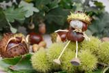 chestnuts  figure sitting on chestnut - 224472956