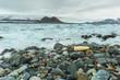 Leinwandbild Motiv Plastic pollution on Arctic coast.