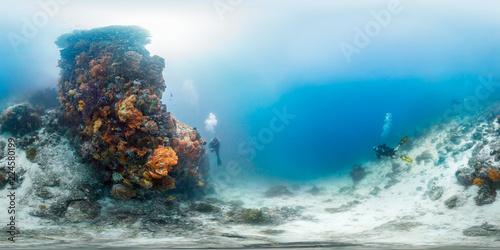 Leinwanddruck Bild Diver off Bangka Island