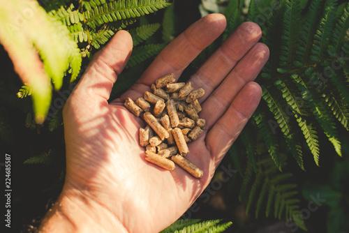 natural wood pellet - 224685587