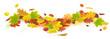 Leinwandbild Motiv Herbst 192