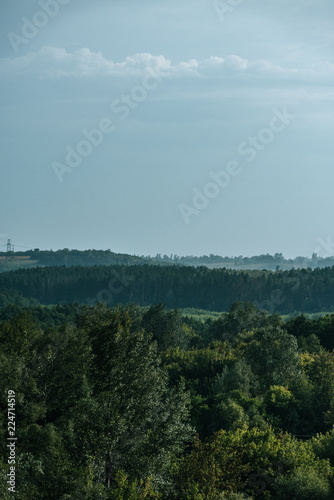 Foto Murales aerial view of green forest and sky in autumn