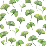 Seamless pattern with green leaves of ginkgo biloba. Hand drawn illustration with colored pencils. Botanical natural design for textiles, interior or some background. - 224731580