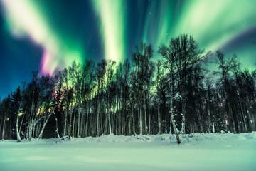 Bright nights © Ansel
