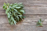 Fresh Sage leaves on old wooden table. Salvia officinalis. Top view, close up, copy spase - 224753302