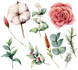 Watercolor autumn set with plants, flowers and berries. Hand painted cotton, rose, lagurus, leaves and branches isolated on white background. Floral illustration for fall design, print. - 224759344