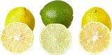 Close-up of fresh lemon isolated on white background - 224769560