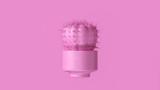 Pink Cactus with Pink Plant Pot 3d illustration 3d render - 224818974