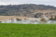 Water irrigators on farmland