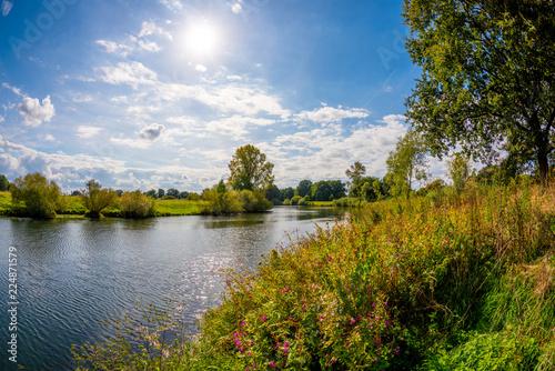 Krajobraz w lecie z rzeką, drzewami i łąkami w jasnym świetle słonecznym