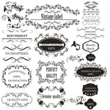 Collection of vector calligraphic elements for design - 224873388