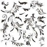 Set of vector swirls for design - 224876101