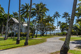 Scenic view of palm trees on tropical beach - 224889300