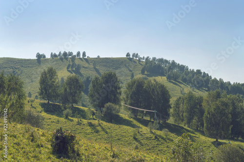 landscape of Altai hills at August - 224910142