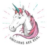 Hand drawing hipster fantasy animal unicorn illustration - 224925324