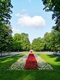 Rot-weißes polnisches Beet im Park - 224930526