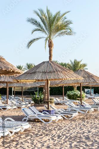 Beach chairs and umbrellas at sea beach. - 225024734