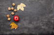 Quadro Red, ripe pomegranate, nuts and fallen yellow maple leaves. Fruits of autumn
