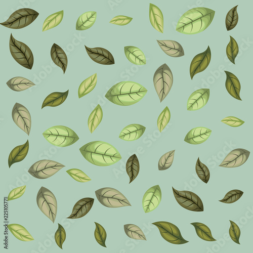 Fototapeta leafs plant pattern background