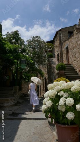 アジサイ咲くイタリアの小道