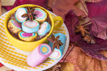 hot chocolate with marshmallows in ceramic cup over autumn leaves