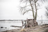 A makeshift hut and a tree near the Dnieper River in Kiev. In the background the Moskovsky bridge - 225155718