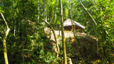 tropical traditional house of the indiginous people in northern colombia - 225159762