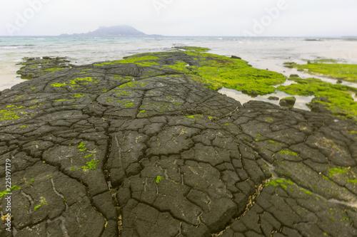 Lava seashore on Jeju Island in South Korea