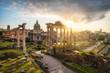 Quadro Ruinen des Forum Romanum in Rom, Italien