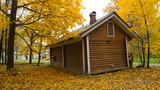 Autumn season in the city - 225204171