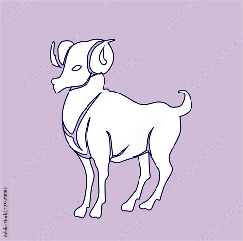 sign of the zodiac vector drawing