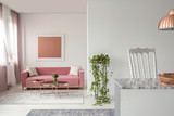 Real photo of a pink couch, plant in a living room interior and open space kitchen island - 225333357