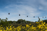 Cabin lift, clouds, yellow flowers - 225360171