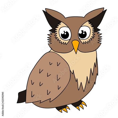 isolated, cute owl character, cartoon