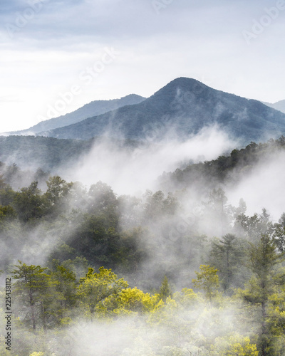 Foto Murales Great Smoky Mountains With Low Clouds