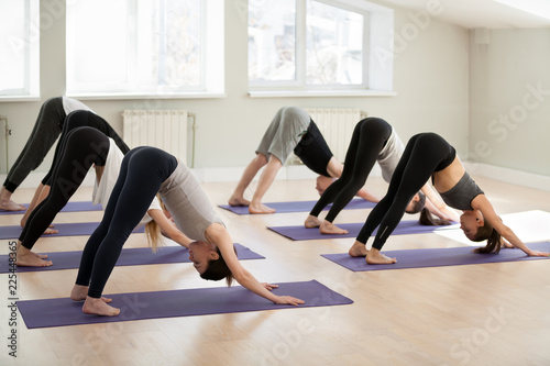 Leinwanddruck Bild Group of young sporty people practicing yoga lesson, doing Downward facing dog exercise, adho mukha shvanasana pose, friends working out, indoor, students training in club, studio. Well-being concept
