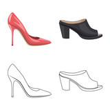 Vector illustration of footwear and woman sign. Collection of footwear and foot stock symbol for web.
