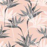 Exotic flowers in monochrome colors, transparent on pastel background - 225478590