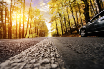 Autumn road and car.