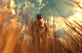 An astronaut discover a new land,3d illustration - 225483393
