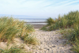 Dunes at the beach of Schillig, Lower Saxony, Germany