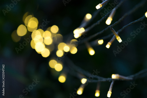 Partly focused yellow Christmas lights hanging on dark tree branch with a beautiful large bokeh on the background - 225547362