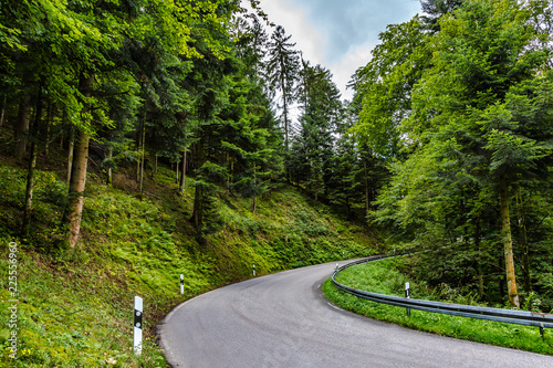 Tarred road winding through lush green countryside_1